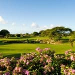 Tropical Gardens at Barbados Golf Club